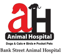 Bank Street Animal Hospital Logo