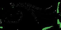 Black Horse Chiropractic Logo