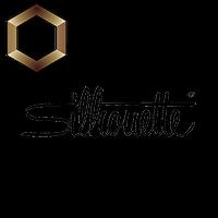 OAA Bronze Partner: Silhouette