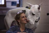 Monica, Monica, Veterinary Assistant