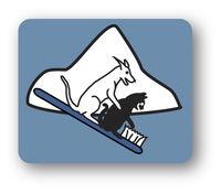 Windsor Pet Dental, PLC