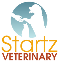 Startz Veterinary