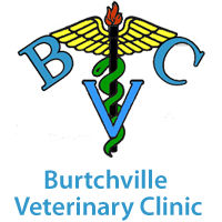 Burtchville Veterinary Clinic