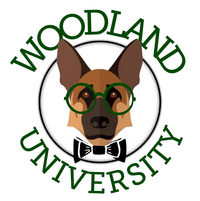 Woodland University