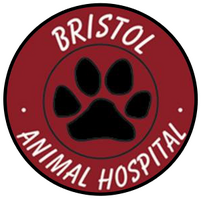 logo-for-Bristol Animal Hospital