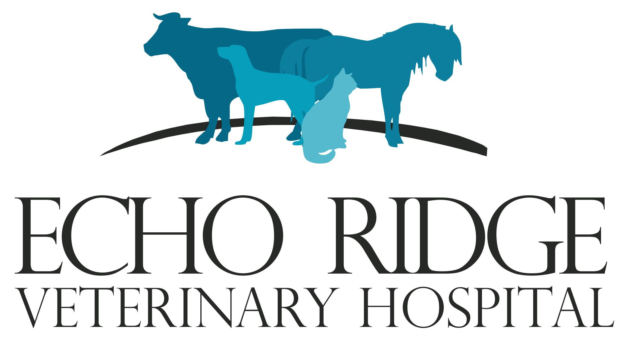 Echo Ridge Veterinary Hospital
