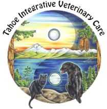 Tahoe Integrative Veterinary Care