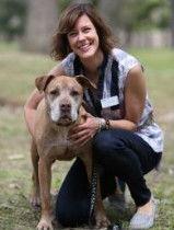 Virginia Gill, DVM, DACVIM (Oncology)