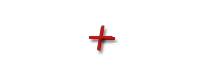 Animal Hospital of Onslow County