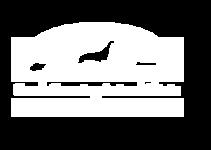CREEK CROSSING Animal Clinic