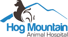 Hog Mountain Animal Hospital