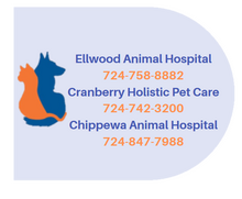 Ellwood Animal Hospital - Veterinarian in Ellwood City, PA