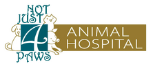 Not Just 4 Paws Animal Hospital
