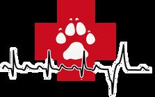 Mass-RI Veterinary Services