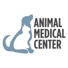 Home Veterinarian In Lubbock Tx Animal Medical Center