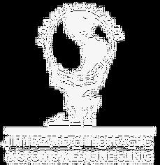 Jim Hazard Chiropractic Logo