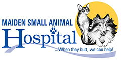 Maiden Small Animal Hospital Logo