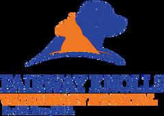 Landing Pages Logo