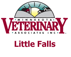 MVA Little Falls Logo