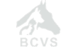 Bollinger County Veterinary Service