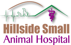 Hillside Small Animal Hospital