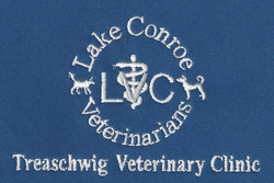 Treaschwig Veterinary Clinic