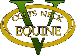 colts neck equine