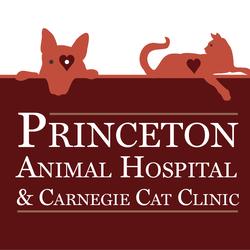 916c29fff3 Princeton Animal Hospital   Carnegie Cat Clinic - Veterinarian in  Princeton