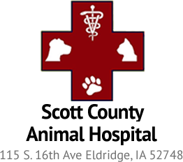 Scott County Animal Hospital