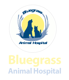 Bluegrass Animal Hospital