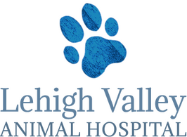 Lehigh Valley Animal Hospital
