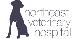 Northeast Veterinary Hospital