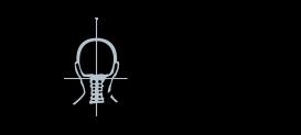 DCC Logo black