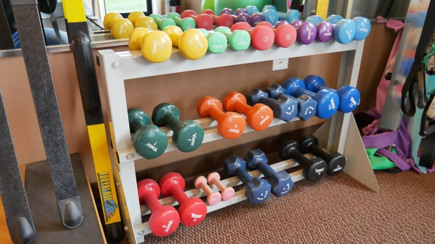 Physical Therapy Weights