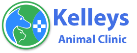 Kelleys Animal Clinic