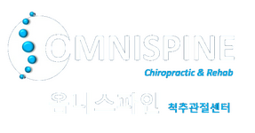 OmniSpine