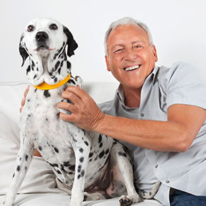 older man and dalmation