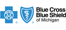 Bluecross Blueshield Michigan