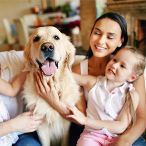 A family with a small child petting a dog together