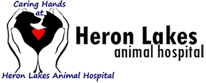 Heron Lakes Animal Hospital Logo