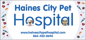 Haines City Pet Hospital