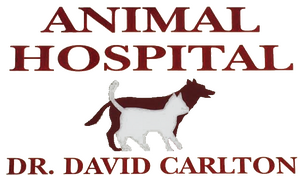 Carlton Animal Clinic