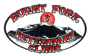 Burnt Fork Veterinary Clinic