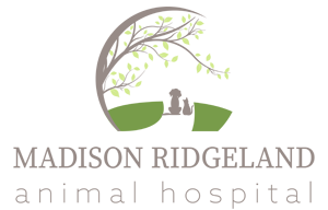Madison Ridgeland Animal Hospital