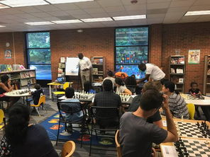 Summer chess course
