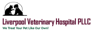Liverpool Veterinary Hospital