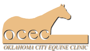 Oklahoma City Equine Clinic