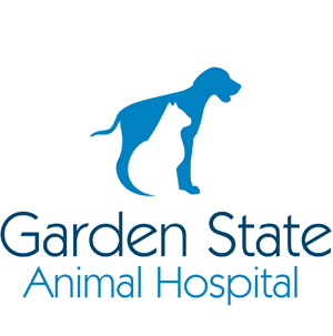 Garden State Animal Hospital   Veterinarian In Cherry Hill, NJ