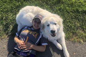 Big Dog