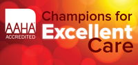 Champions for Excellent Care
